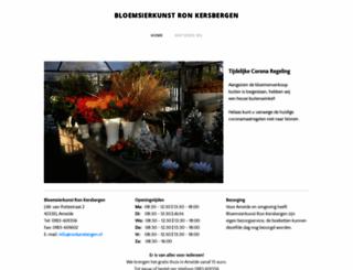 ronkersbergen.nl screenshot
