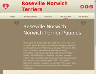 rosevillenorwich.com screenshot