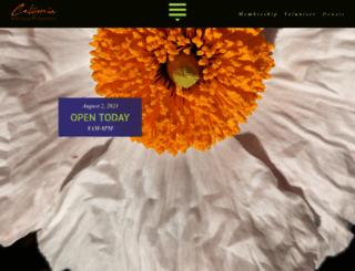 rsabg.org screenshot