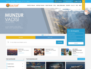 saltur.com.tr screenshot