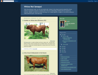 senepol.blogspot.com screenshot