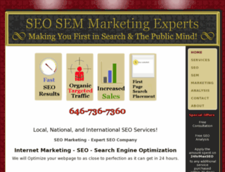 seosemmarketingexperts.com screenshot