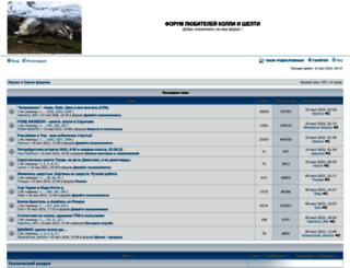 sibforum.mybb3.ru screenshot
