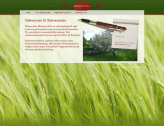 skanestaden.com screenshot