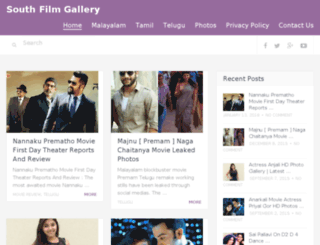 southfilmgallery.com screenshot