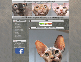 sph-nv.ru screenshot
