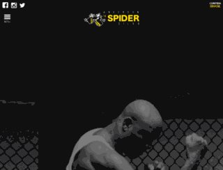 spideranderson.com screenshot