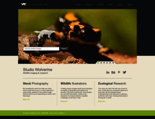 studiowolverine.com screenshot