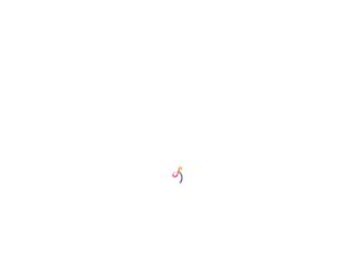 stylori.com screenshot