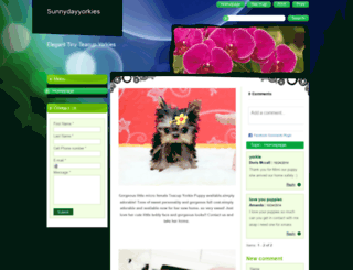 sunnydayyorkies.webnode.com screenshot