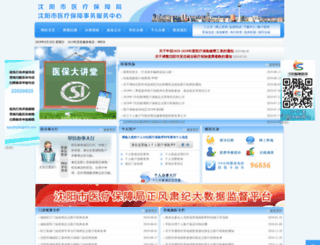 syyb.gov.cn screenshot
