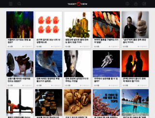 targetview.com screenshot