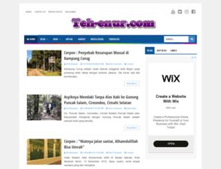 teh-enur.com screenshot