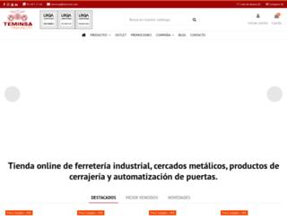 teminsa.com screenshot
