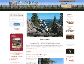 teviscup.org screenshot