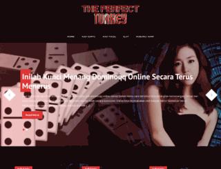 the-perfect-turkey.com screenshot