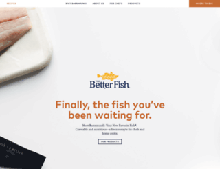 thebetterfish.com screenshot
