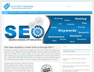theseoservicescompanyindia.com screenshot