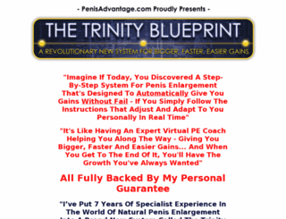 thetrinityblueprint.com screenshot