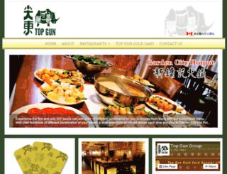 topgungroup.com screenshot