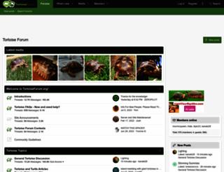 tortoiseforum.org screenshot