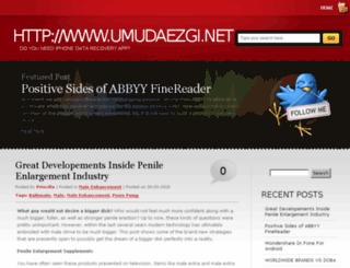 umudaezgi.net screenshot