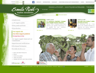 usa.emilenoel.com screenshot