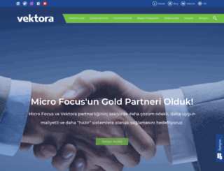 vektora.com screenshot