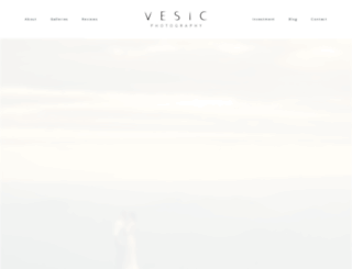 vesic.com screenshot