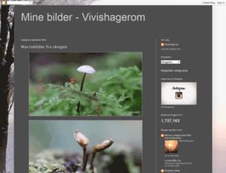 vivishagerom.blogspot.com screenshot