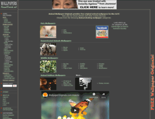 wallpapers.animalsearch.net screenshot