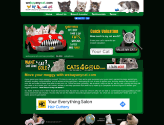 webuyanycat.com screenshot