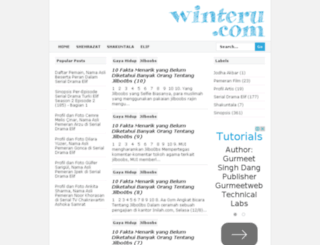 winteru.com screenshot