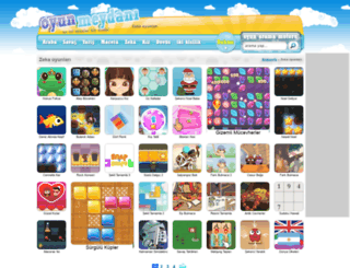 zeka.oyunmeydani.com screenshot