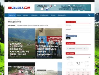 zeleka.com screenshot