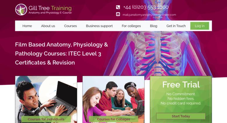 Access anatomyandphysiologyonline.com. ITEC Level 3 Anatomy And ...