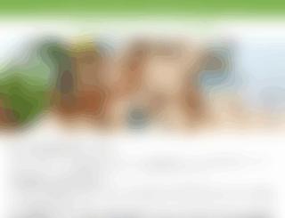 art-customer.net screenshot