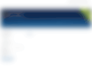 budhiweb.com screenshot