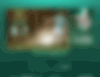 fkzalgiris.lt screenshot