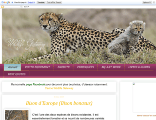 1000-pattes.blogspot.nl screenshot