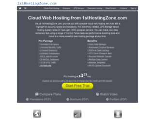 1sthostingzone.com screenshot