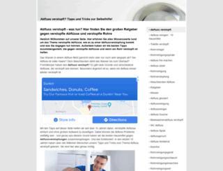 abfluss-verstopft.info screenshot