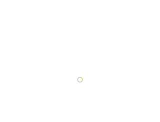 addipos.com screenshot