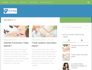 adilbilgi.com screenshot