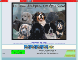 adoptiongroschiens.forumsactifs.com screenshot