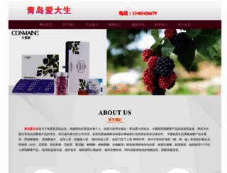 adsicon.com screenshot