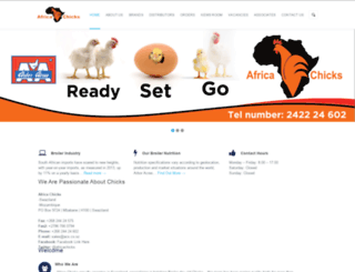 africachicks.net screenshot
