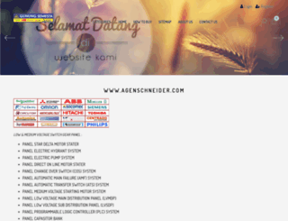 agenschneider.com screenshot
