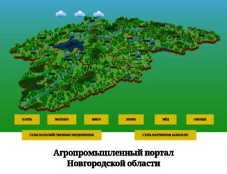 agro53.ru screenshot