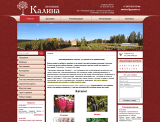 akalina.ru screenshot